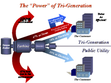 The 'Power' of Tri-Generation
